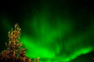 Aurora_Borealis_(231574247)